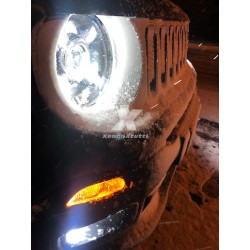 faro led renegade top