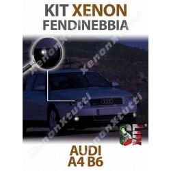 XENON FENDINEBBIA AUDI A4 B6