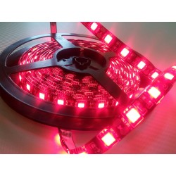 Strip Led 60 Led/mt  5050 BLU