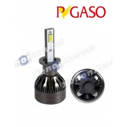 kit led h1 pegaso canbus