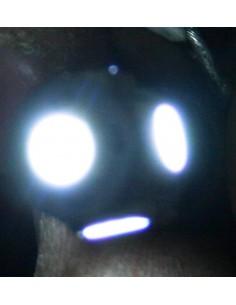 COPPIA DI LED BA9S 5 SMD 5050