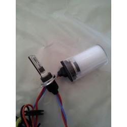 COPPIA LAMPADE H7R con schermatura