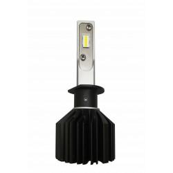 LAMPADA H1
