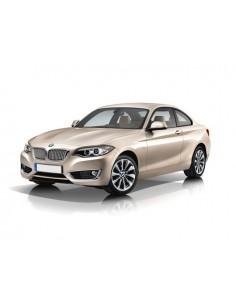 KIT LED DIURNO ABBAGLIANTE BMW SERIE 2 F22
