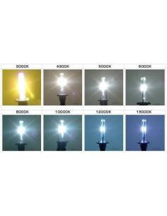 COPPIA DI LAMPADE  DC