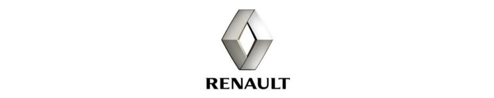Kit led, kit xenon, luci, bulbi, lampade auto per RENAULT