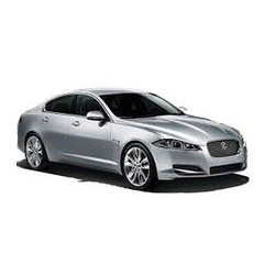 XF Restyling
